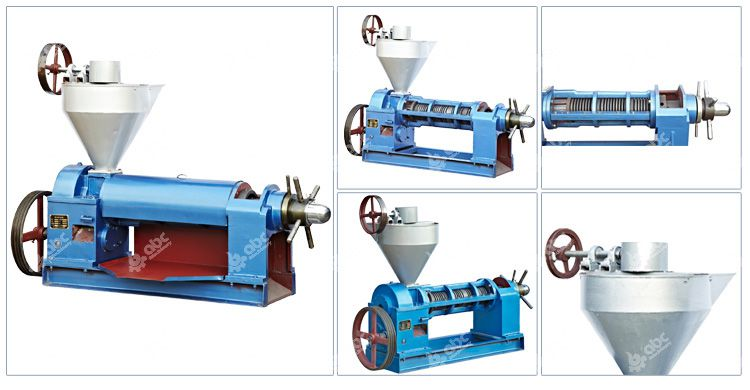 niger seed oil press machine for sales