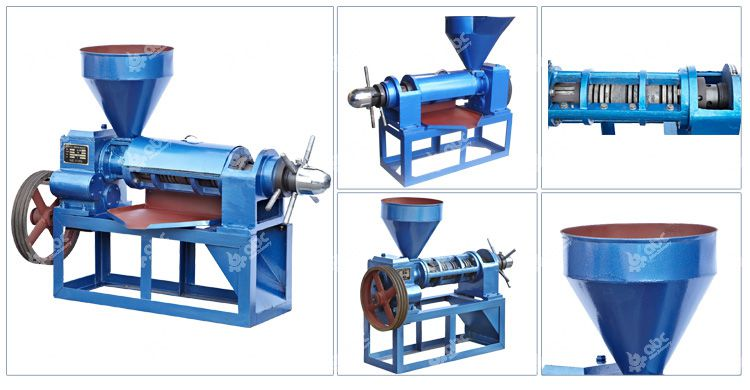 soybean oil press machine at factory price