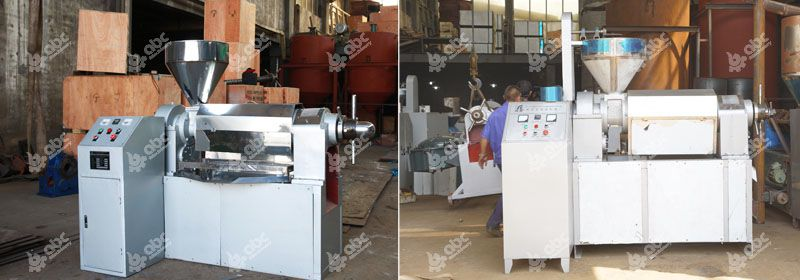 factory price auto-temperature control oil press for hemp seed oil
