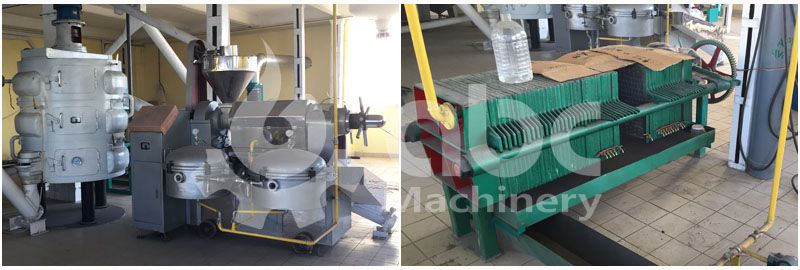 sunflower oil press machine and oil filter press machine