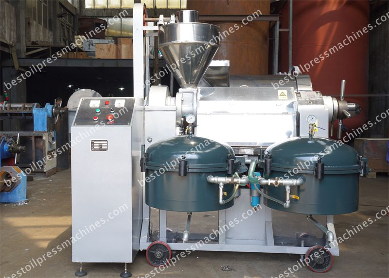almond oil press machine at factory price for sale