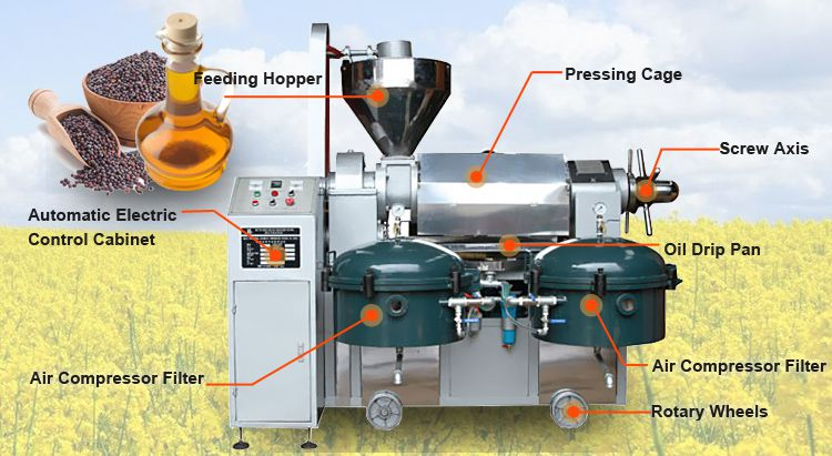 automatic mustard oil machine at factory price
