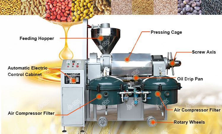 automatic oil press machine structure features