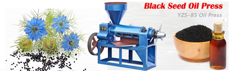 low price black seed oil press