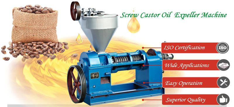 small screw castor oil expeller machine at factory price