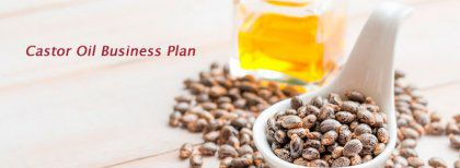 Castor Oil Processing Plant Setup Tips