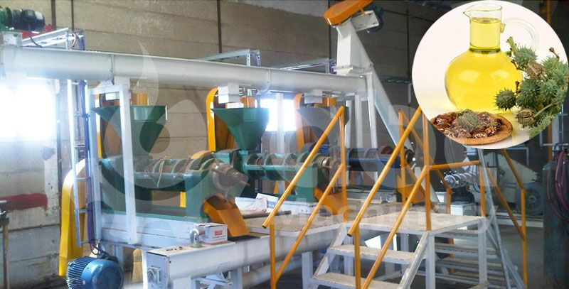 castor oil pressing line at factory price