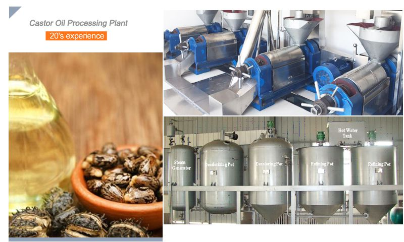 castor oil processing plant for commercial uses