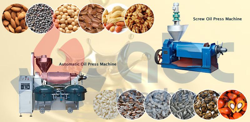 commercial oil press machine features