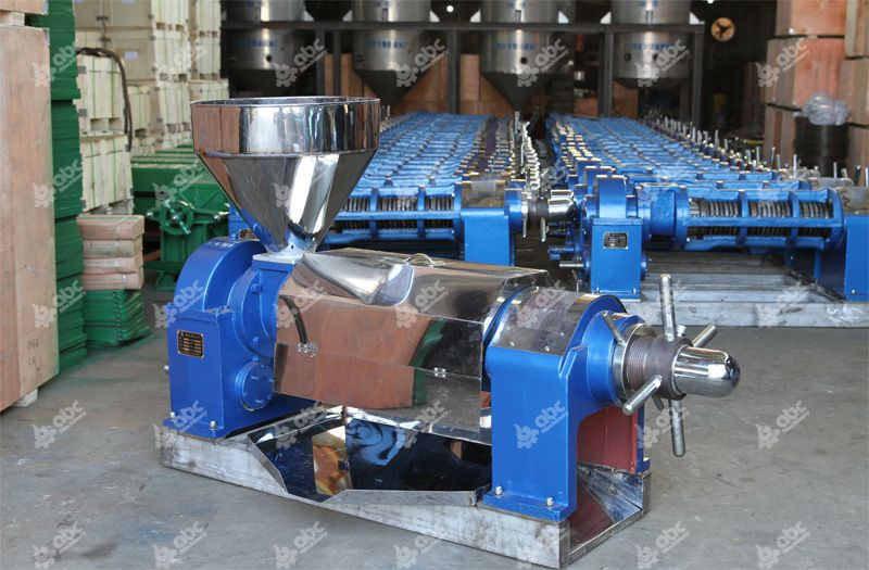 cooking oil press at factory price