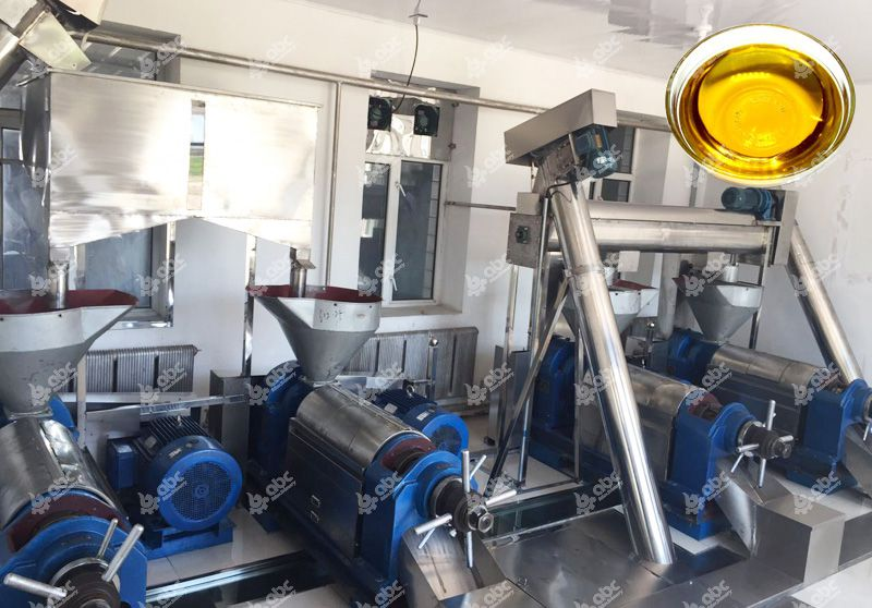 cooking oil pressing line