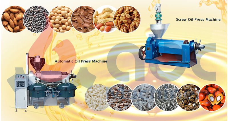 correct operation of screw oil press