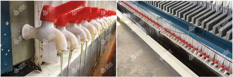 cotton seed oil filtration
