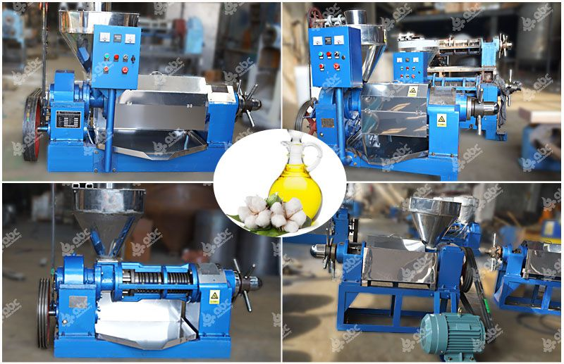 Cotton Seed Oil Machine