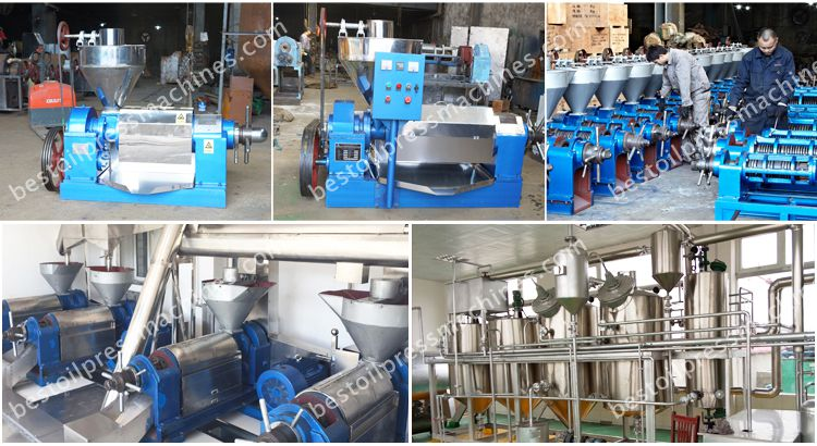 cottonseed oil manufacturing machine for sales