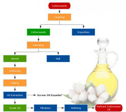 What is the Cottonseed Oil Manufacturing Process by Mechanical Pressing?