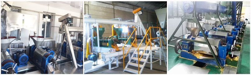 edible oil mill plant setup in Africa