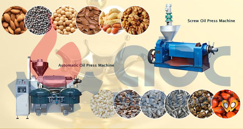 edible oil pressing machine for sales