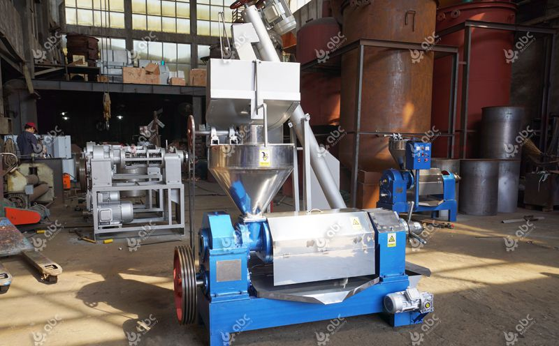 flaxseed cold oil press machine for sales
