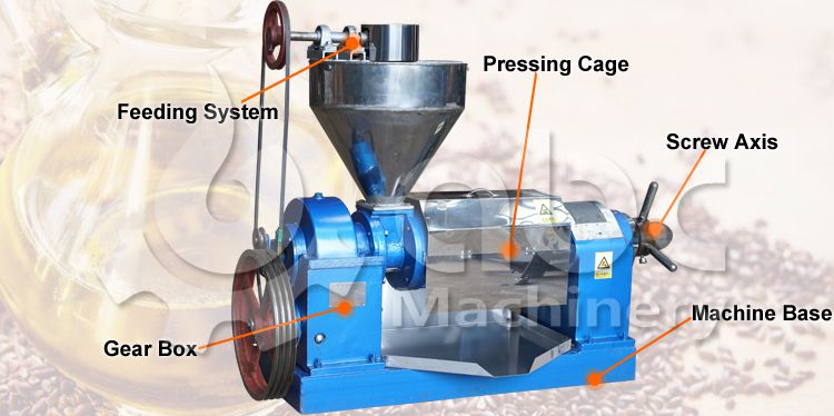 flaxseed oil press machine structure