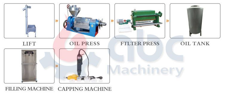 hemp seed oil cold press machine at factory price