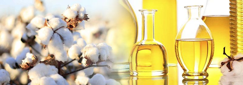 how to make cottonseed oil