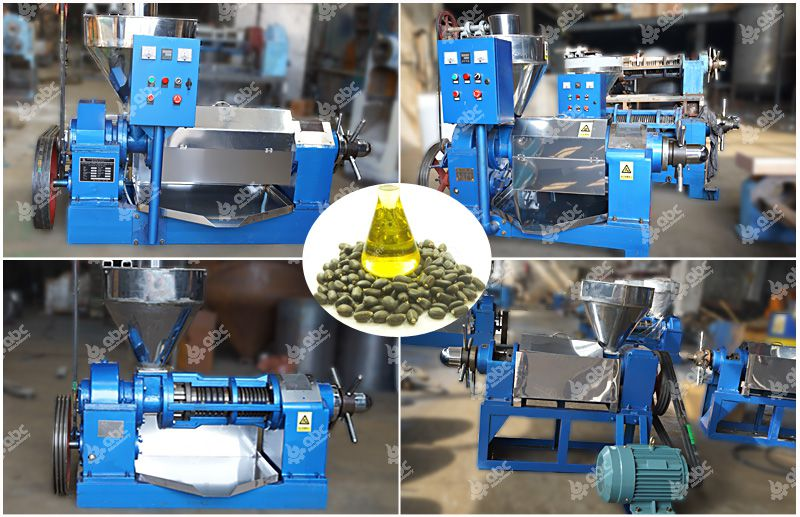 YZS series small jatropha oil press machine for sales