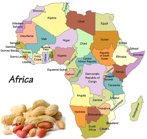 Groundnut Oil Processing Mill Setup Cost in Africa