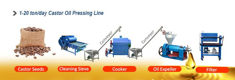 mini castor oil processing plant for sales