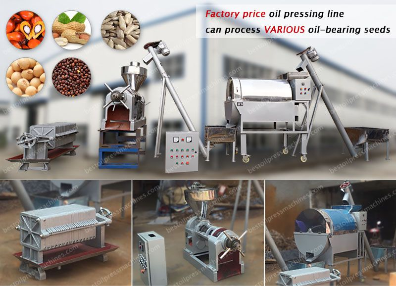 mini soya oil production mill at factory price