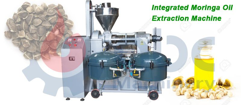 moringa oil extraction machine at factory price