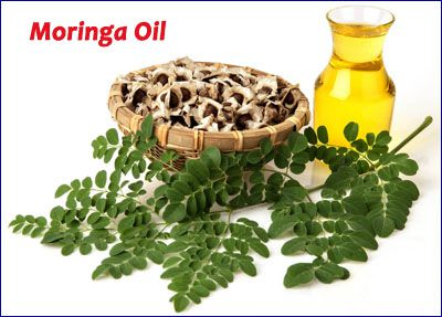moringa oil compositions