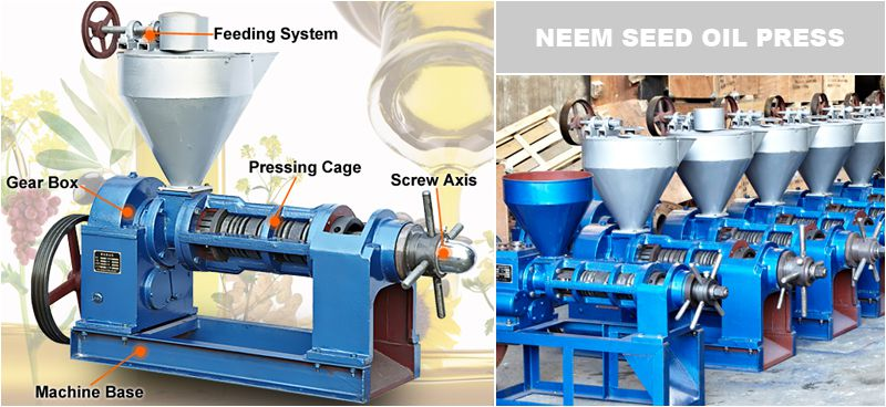 neem seed oil press machine for sales at factory price