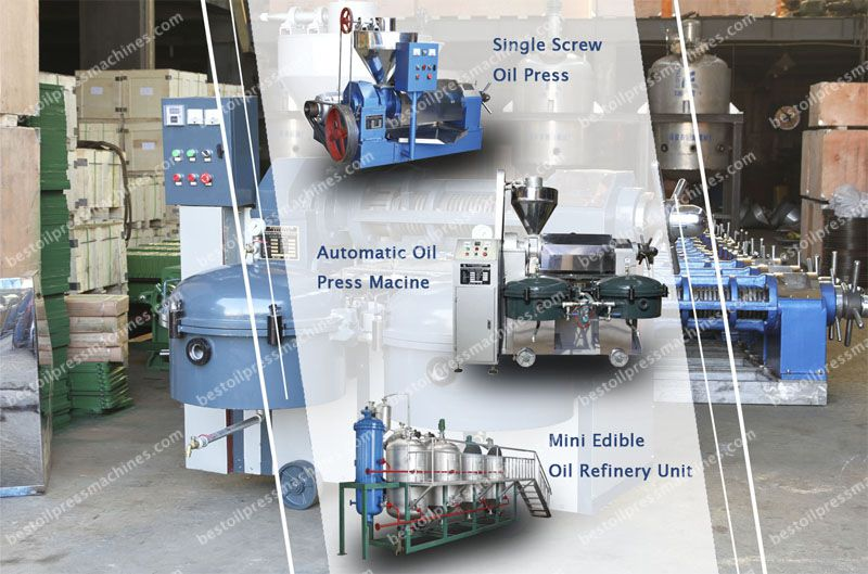 Factory price oil press machine in Tanzania