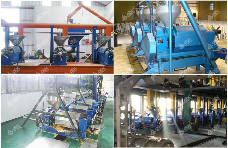 oil pressing plants for sales
