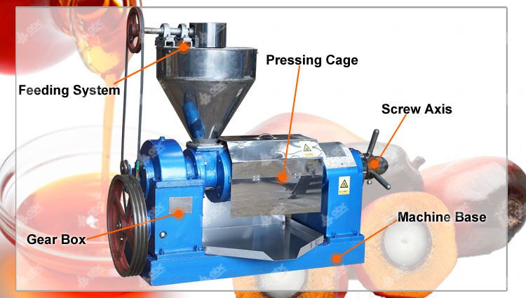 palm kernel oil expeller machine structure