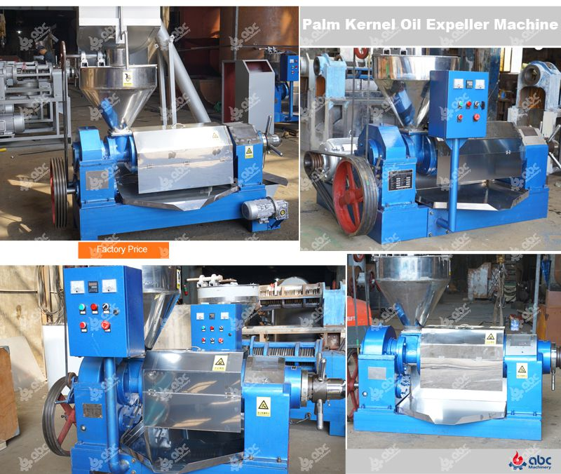 palm kernel oil expeller machine at factory price
