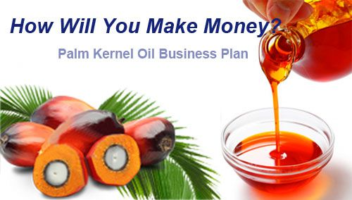 customized business plan for palm kernel oil production