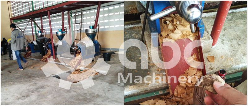 peanut oil press machine test