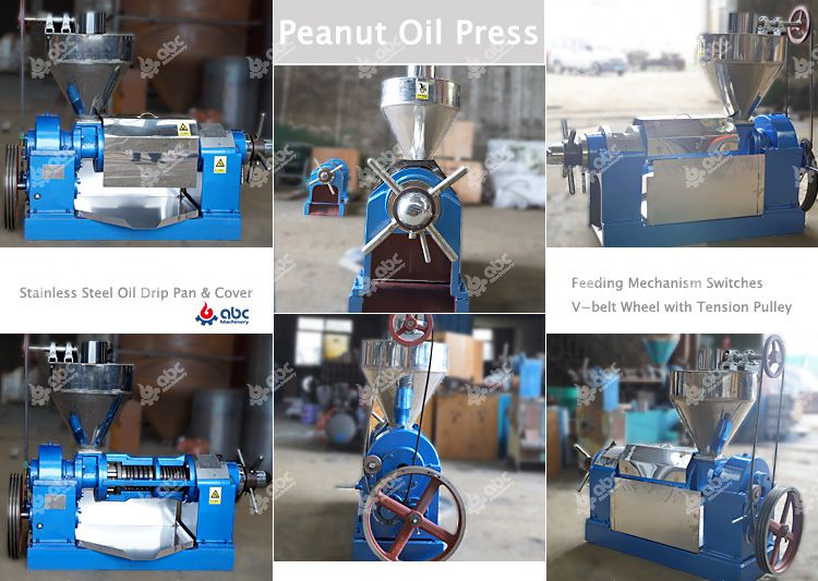 peanut oil press at factory price