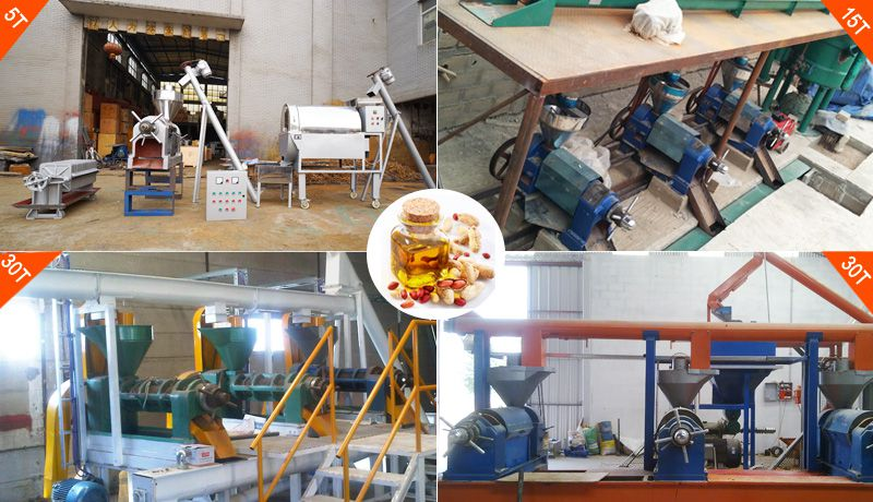 small peanut oil production line at lowest cost