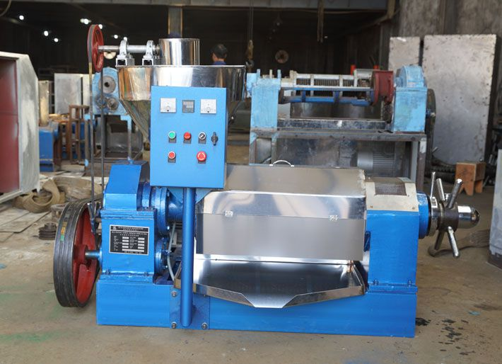 prickly pear seed oil extraction machine at factory