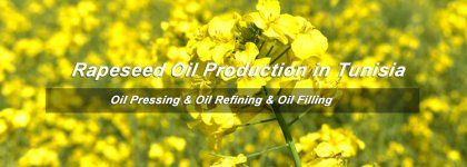 Overall Analysis on Rapeseed Oil Production Line Setup Cost in Tunisia