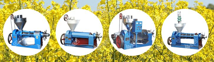 rapeseed oil press machine at competitive price