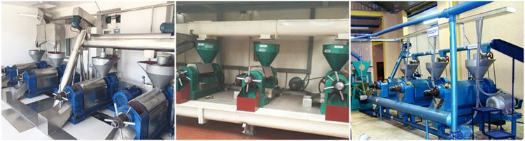 sesame oil manufacturing factory for sales