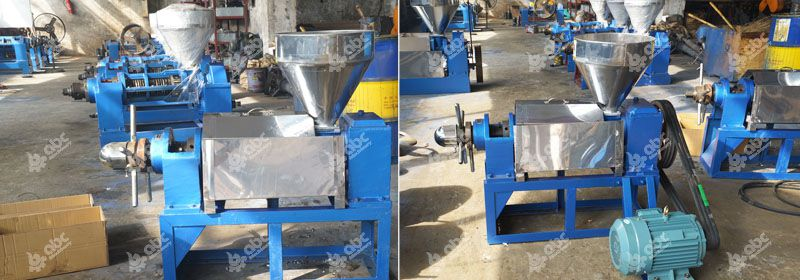 single screw hemp seed oil press for sales