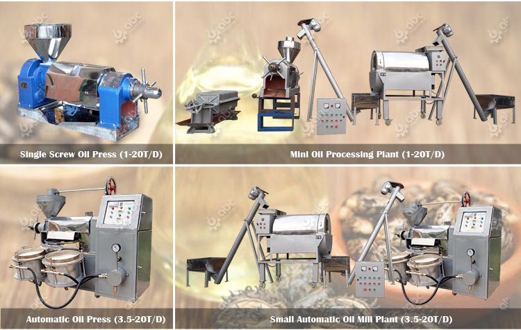 hot sale small castor oil extraction machine at factory price
