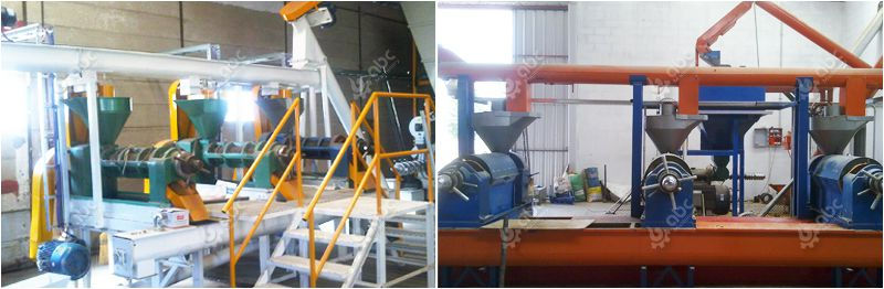 small castor oil extraction plant for sales
