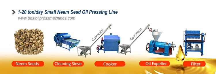 small neem seed oil extraction line for sales