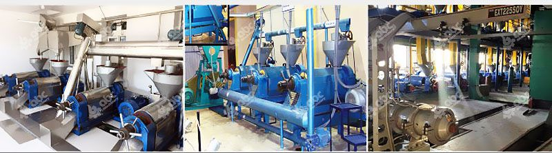 small oil extraction machine at factory price